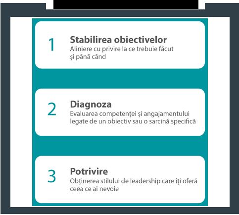 Self leadership diagrama
