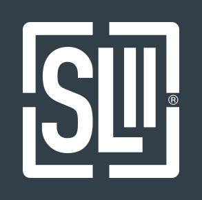 cursuri SLII | Ken Blanchard